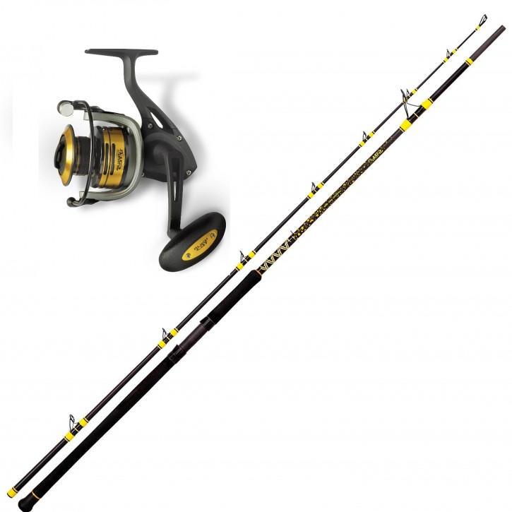 Black Cat Passion Pro Wallerset 680 FD Rolle + DX 3,00m
