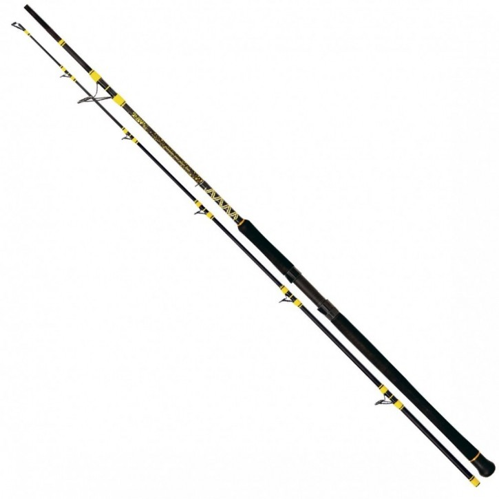 Black Cat Passion Pro DX Boat - 2,50m