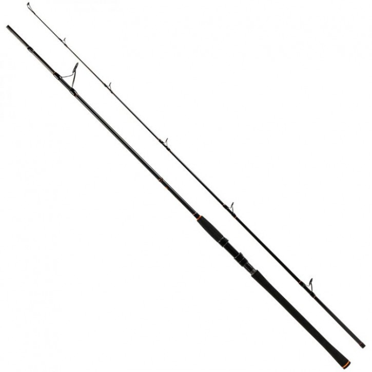 Zeck Fishing Big Stick 250 cm - 150 g
